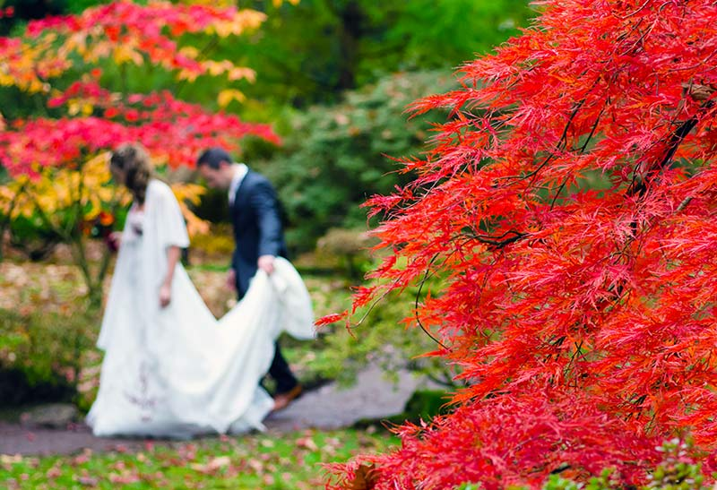 Tis' the Season: Top Autumn Wedding Themes